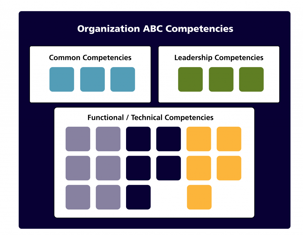 boxes representing competencies arranged in groups in a framework