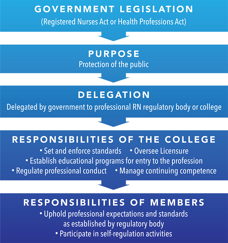 professional self-regulation, legislation, delegation, responsibilities