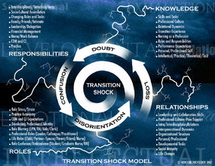 transition shock, responsibilities, role, knowledge, relationships
