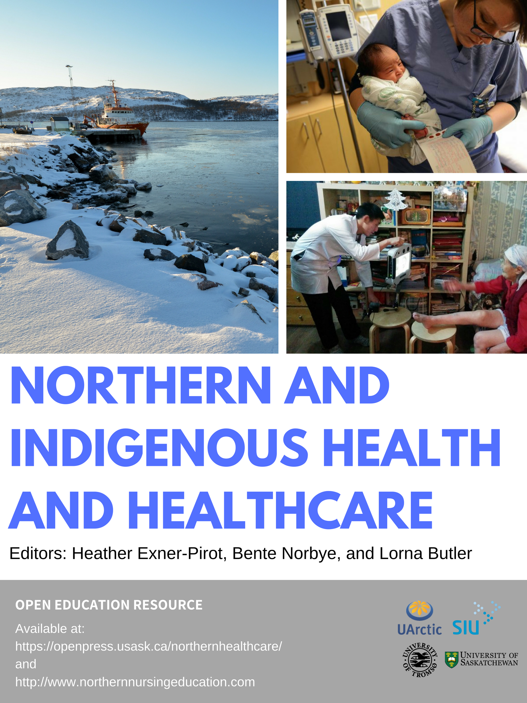 Cover image for Northern and Indigenous Health and Healthcare