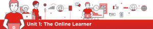 The Online Learner